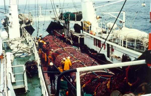 Trawler full bag fd23.jpg